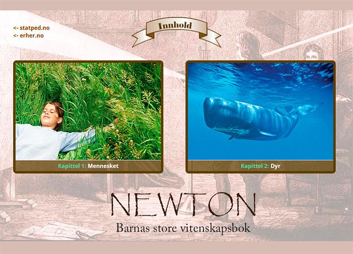 skjermdump, newton